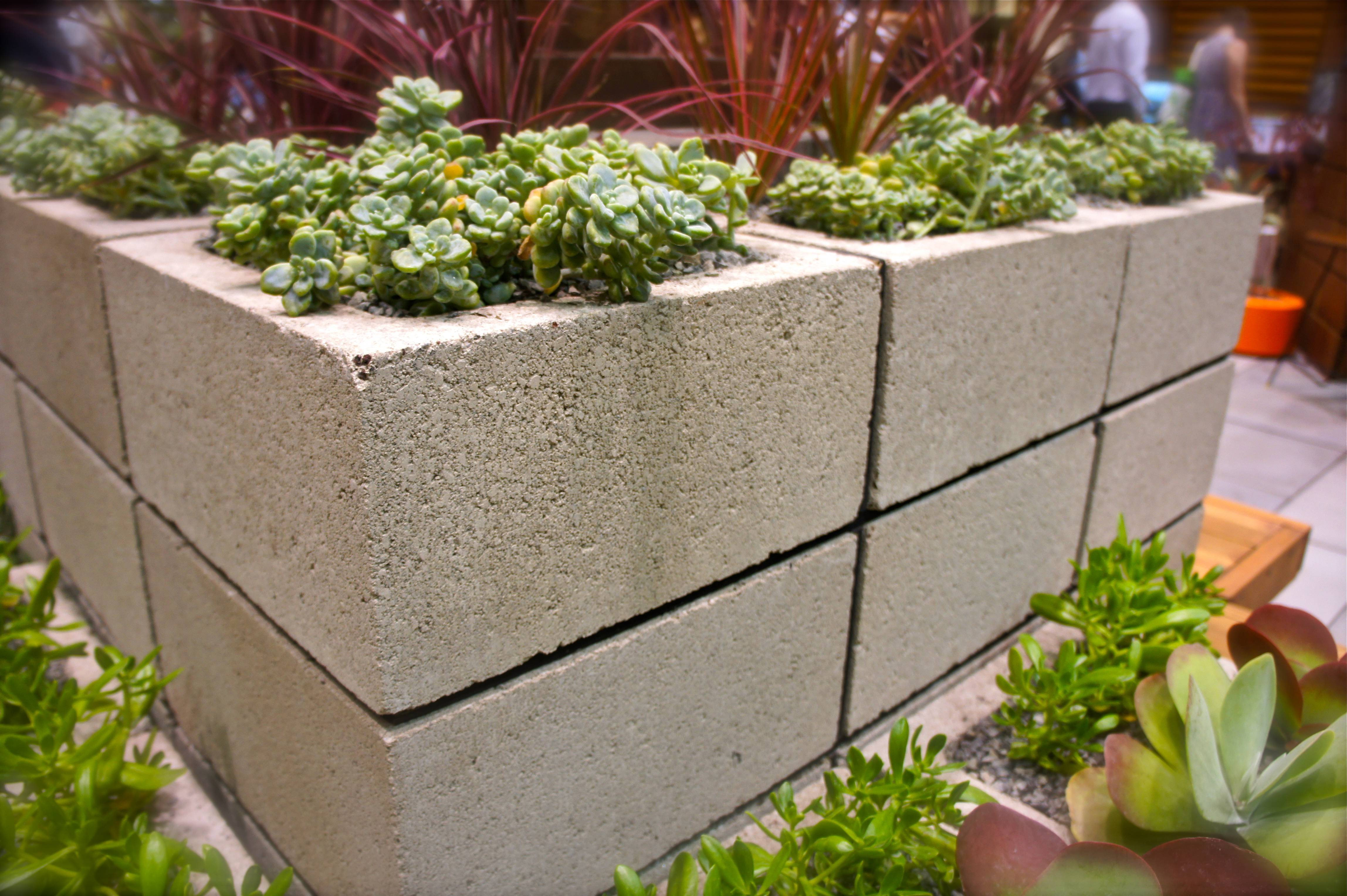 create a cinder block planter